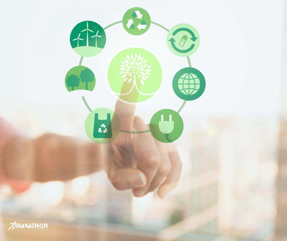 Obligațiile fondului pentru mediu: rolul și importanța lor