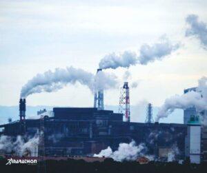 Protejarea mediului: ce putem face pentru a ajuta planeta